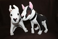 Grote Bullterrier Knuffel