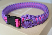 Dog collar - purple and pink