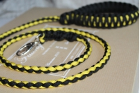 Dog leash - black and yellow